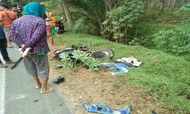 Surian ditemukan terkapar dipinggiran Jalan Lintas Sumatera (Jalinsum) Kilometer (KM) 118-119 Medan - Kisaran, sudah dalam kondisi tidak bernyawa