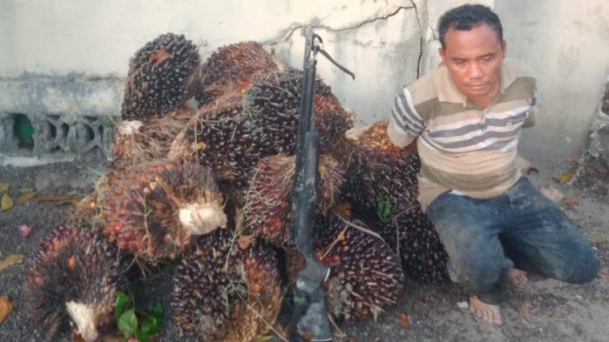 Sakeus Sinaga ditangkap pada Sabtu(28/3/2020) sekira pukul 16:30WIB