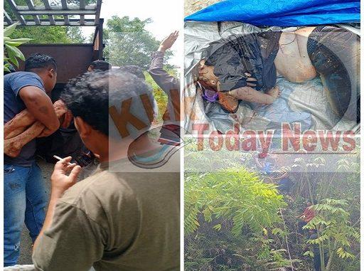 Colt Diesel Masuk Jurang Di Desa Lintong Nihuta, 2 Orang Meninggal