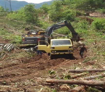 Alat berat di lokasi penebangan kayu
