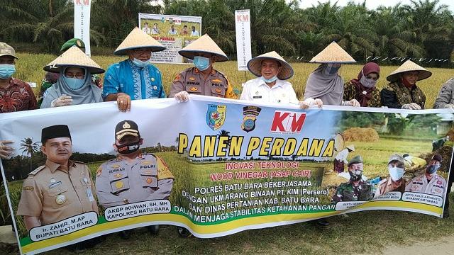 Panen Padi Perdana dengan Inovasi Teknologi Wood Vinegar (Asap Cair) di Dusun 1 Desa Tanjung Muda Kecamatan Air Putih Kabupaten Batu Bara, Kamis, 16/7/2020 sekira pukul 14.00 wib.