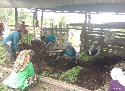 Para petani yang bergabung dalam Kelompok Tani Lestari Desa Salaon Dolok Kecamatan Ronggurnihuta
