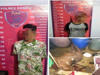 Dua pria ditangkap Polisi karena mencuri seekor kambing