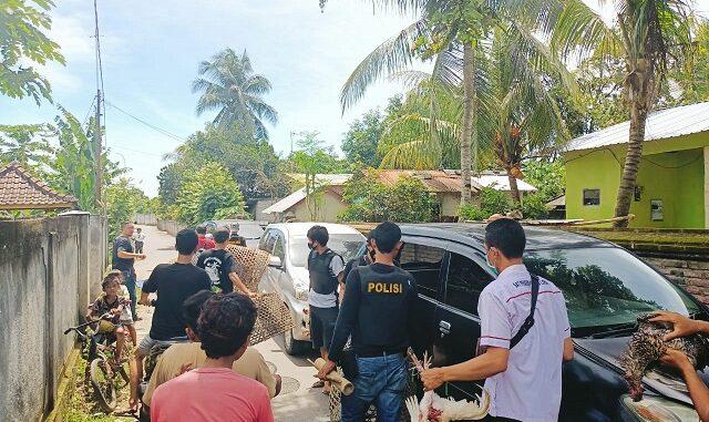 Tim Puma Sat Reskrim Polres Lombok Barat, bubarkan judi Sabung Ayam di Dsn. Lamper Ds. Jagerage Kec. Kediri Kab.Lombok Barat, Rabu (17/2/2020).